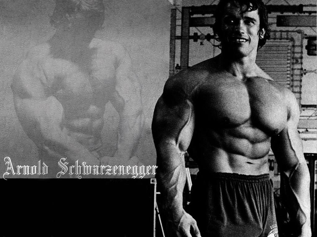 Arnold Schwarzenegger Motivational Poster Images of arnoldArnold Schwarzenegger Bodybuilding Quotes Wallpaper
